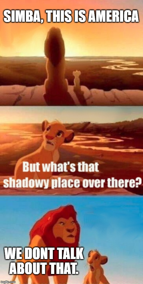 Simba Shadowy Place Meme | SIMBA, THIS IS AMERICA WE DONT TALK ABOUT THAT. | image tagged in memes,simba shadowy place | made w/ Imgflip meme maker