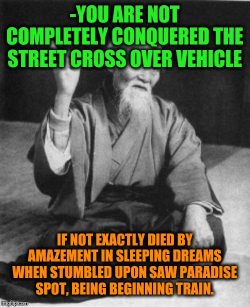 -Extreme kind of sport regarding. | -YOU ARE NOT COMPLETELY CONQUERED THE STREET CROSS OVER VEHICLE IF NOT EXACTLY DIED BY AMAZEMENT IN SLEEPING DREAMS WHEN STUMBLED UPON SAW P | image tagged in aikido master,skateboarding,snowboarding,scooter,beware,desire | made w/ Imgflip meme maker