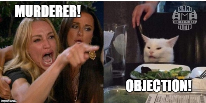 white cat table | MURDERER! OBJECTION! | image tagged in white cat table | made w/ Imgflip meme maker