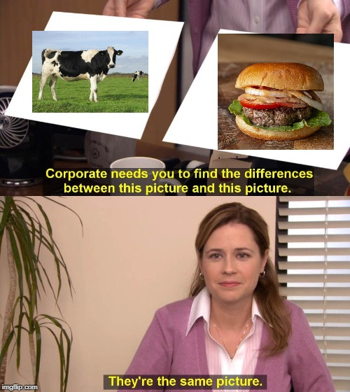 image tagged in funny,fun,the office,cows,hamburgers | made w/ Imgflip meme maker