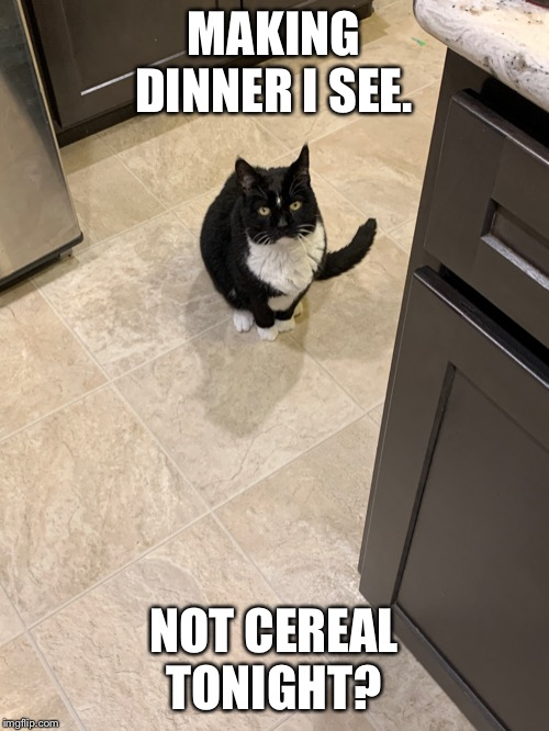MAKING DINNER I SEE. NOT CEREAL TONIGHT? | image tagged in the judgy roommate | made w/ Imgflip meme maker