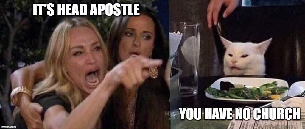 woman yelling at cat | IT'S HEAD APOSTLE YOU HAVE NO CHURCH | image tagged in woman yelling at cat | made w/ Imgflip meme maker