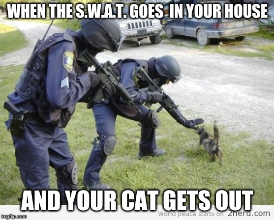 Fight Crime LAter, Pet Kitty Now | WHEN THE S.W.A.T. GOES  IN YOUR HOUSE AND YOUR CAT GETS OUT | image tagged in fight crime later pet kitty now | made w/ Imgflip meme maker