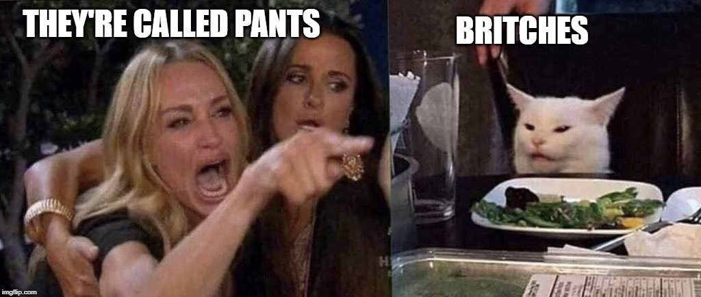 woman yelling at cat | THEY'RE CALLED PANTS BRITCHES | image tagged in woman yelling at cat | made w/ Imgflip meme maker