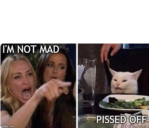 Ladies Yelling at Confused Cat | I'M NOT MAD PISSED OFF | image tagged in ladies yelling at confused cat | made w/ Imgflip meme maker