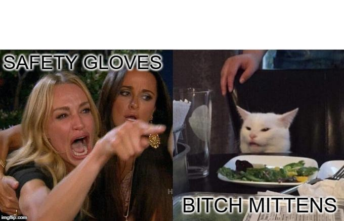 Woman Yelling At Cat Meme | SAFETY GLOVES B**CH MITTENS | image tagged in memes,woman yelling at a cat | made w/ Imgflip meme maker