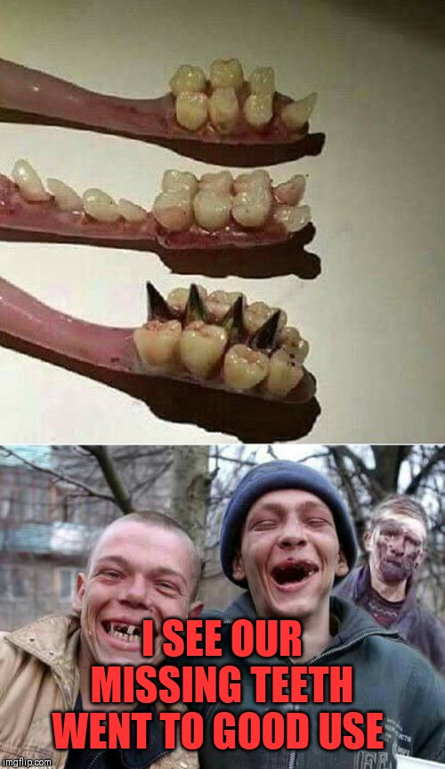 Fancy brushing your teeth with someone else's teeth? ಠ﹏ಠ | I SEE OUR MISSING TEETH WENT TO GOOD USE | image tagged in disgusting,teeth,wtf,put to good use | made w/ Imgflip meme maker