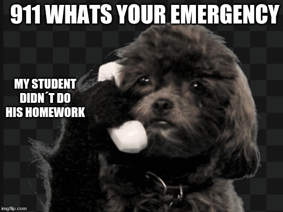 HELLOHELLO | 911 WHATS YOUR EMERGENCY MY STUDENT DIDN´T DO HIS HOMEWORK | image tagged in hellohello | made w/ Imgflip meme maker