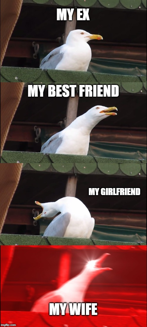 Inhaling Seagull Meme | MY EX MY BEST FRIEND MY GIRLFRIEND MY WIFE | image tagged in memes,inhaling seagull | made w/ Imgflip meme maker