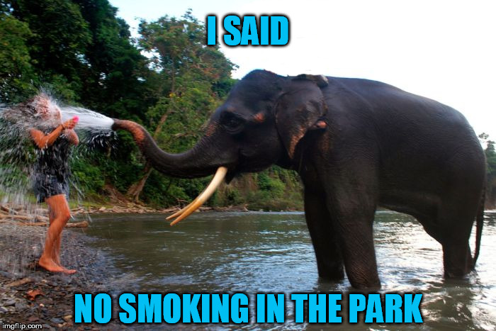 I SAID NO SMOKING IN THE PARK | made w/ Imgflip meme maker