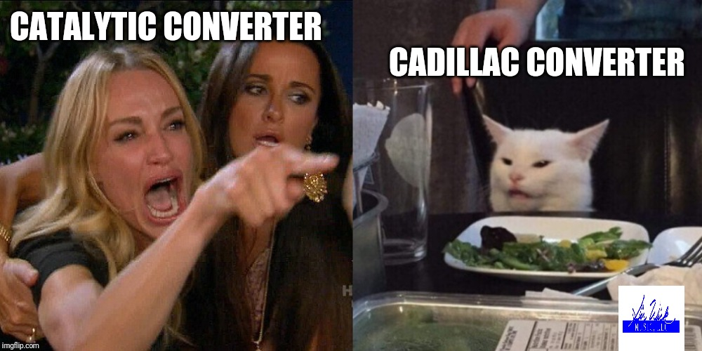 Woman yelling at cat | CATALYTIC CONVERTER CADILLAC CONVERTER | image tagged in woman yelling at cat | made w/ Imgflip meme maker