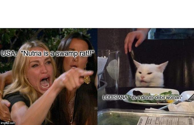 "Woman Yelling At Cat Meme | USA:  ""Nutria is a swamp rat!!"" LOUISIANA: ""its a dinner debil woman"" 