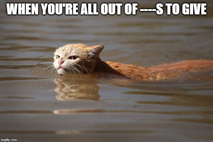 mad cat | WHEN YOU'RE ALL OUT OF ----S TO GIVE | image tagged in mad cat | made w/ Imgflip meme maker