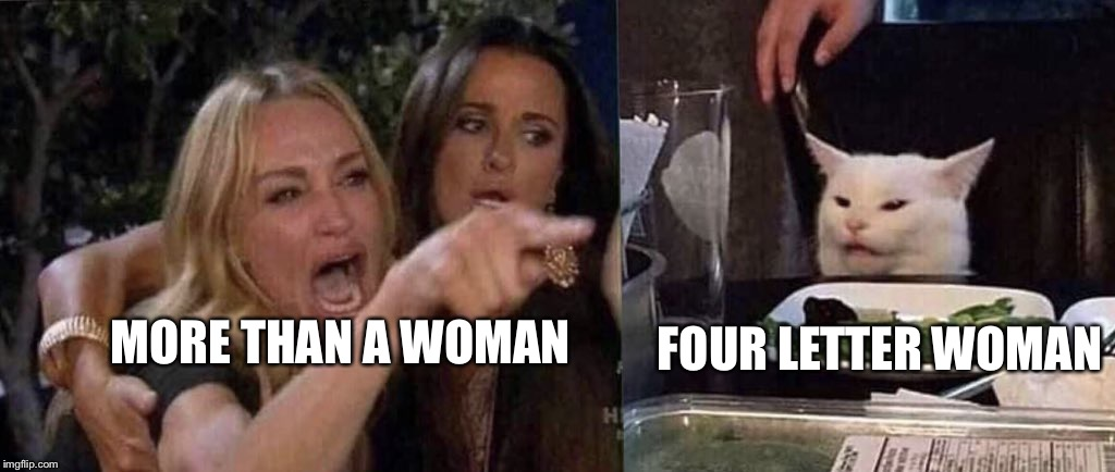 woman yelling at cat | MORE THAN A WOMAN FOUR LETTER WOMAN | image tagged in woman yelling at cat | made w/ Imgflip meme maker