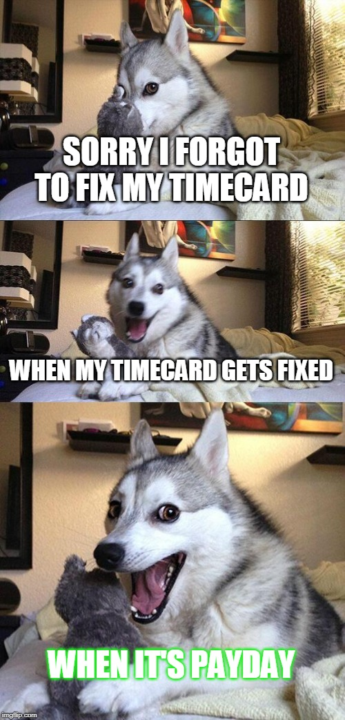 Bad Pun Dog Meme | SORRY I FORGOT TO FIX MY TIMECARD WHEN MY TIMECARD GETS FIXED WHEN IT'S PAYDAY | image tagged in memes,bad pun dog | made w/ Imgflip meme maker