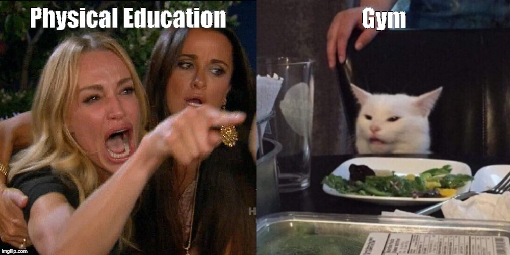 Woman yelling at cat | Physical Education Gym | image tagged in woman yelling at cat | made w/ Imgflip meme maker