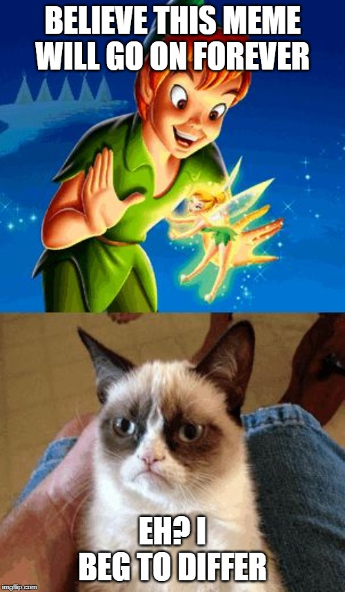 Grumpy Cat Does Not Believe Meme | BELIEVE THIS MEME WILL GO ON FOREVER EH? I BEG TO DIFFER | image tagged in memes,grumpy cat does not believe,grumpy cat | made w/ Imgflip meme maker