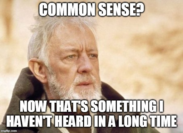 Obi Wan Kenobi |  COMMON SENSE? NOW THAT'S SOMETHING I HAVEN'T HEARD IN A LONG TIME | image tagged in memes,obi wan kenobi | made w/ Imgflip meme maker