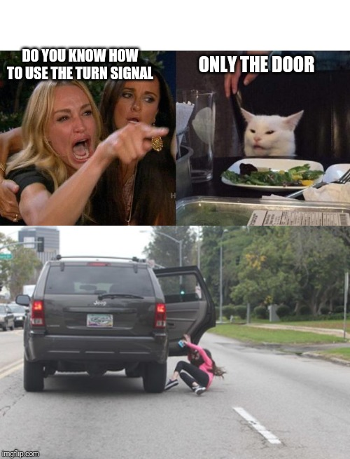 How to deal with back seat drivers | DO YOU KNOW HOW TO USE THE TURN SIGNAL ONLY THE DOOR | image tagged in memes,woman yelling at cat,funny,meme | made w/ Imgflip meme maker