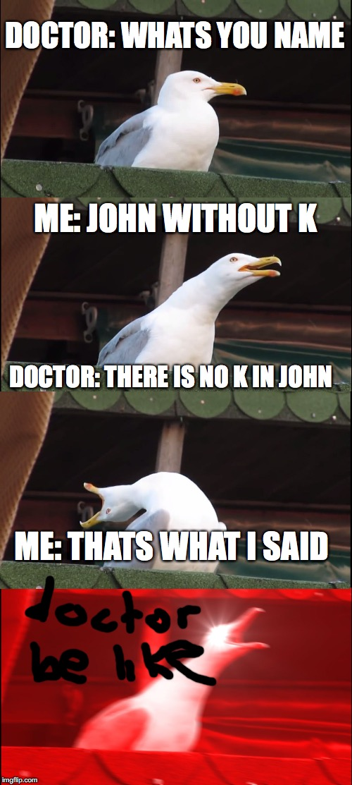 Inhaling Seagull Meme | DOCTOR: WHATS YOU NAME ME: JOHN WITHOUT K DOCTOR: THERE IS NO K IN JOHN ME: THATS WHAT I SAID | image tagged in memes,inhaling seagull | made w/ Imgflip meme maker