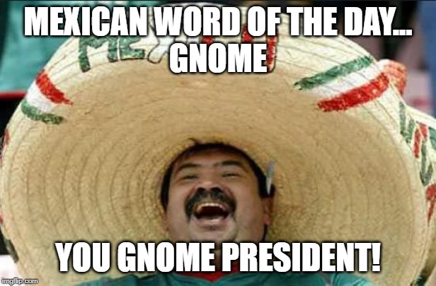 mexican word of the day | MEXICAN WORD OF THE DAY... GNOME YOU GNOME PRESIDENT! | image tagged in mexican word of the day | made w/ Imgflip meme maker