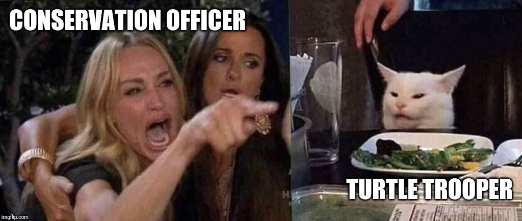 woman yelling at cat | CONSERVATION OFFICER TURTLE TROOPER | image tagged in woman yelling at cat | made w/ Imgflip meme maker