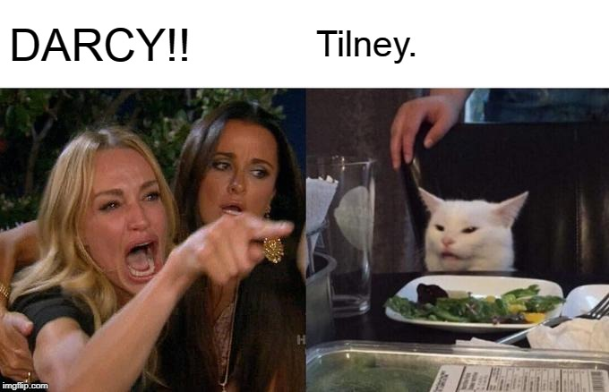 Woman Yelling At Cat Meme | DARCY!! Tilney. | image tagged in memes,woman yelling at cat | made w/ Imgflip meme maker