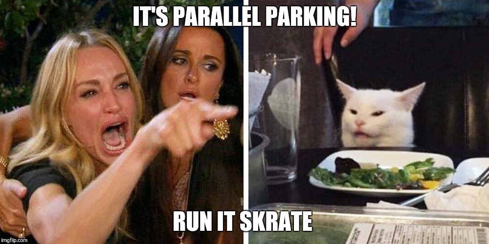 Smudge the cat | IT'S PARALLEL PARKING! RUN IT SKRATE | image tagged in smudge the cat | made w/ Imgflip meme maker