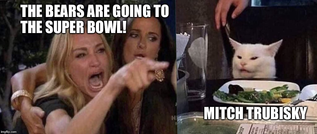 woman yelling at cat | THE BEARS ARE GOING TO THE SUPER BOWL! MITCH TRUBISKY | image tagged in woman yelling at cat | made w/ Imgflip meme maker