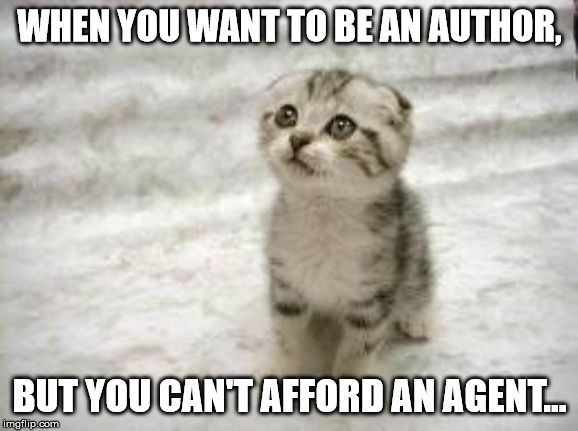 Sad Cat |  WHEN YOU WANT TO BE AN AUTHOR, BUT YOU CAN'T AFFORD AN AGENT... | image tagged in memes,sad cat | made w/ Imgflip meme maker