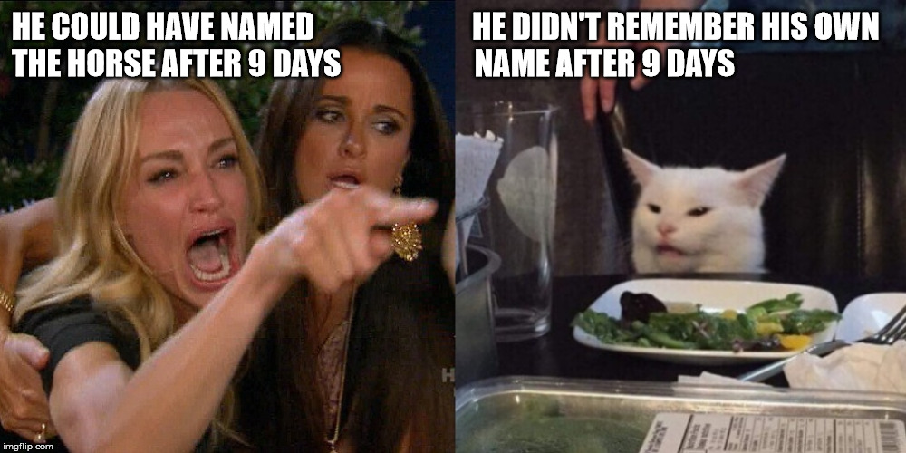 Woman yelling at cat | HE COULD HAVE NAMED                          HE DIDN'T REMEMBER HIS OWN THE HORSE AFTER 9 DAYS                      NAME AFTER 9 DAYS | image tagged in woman yelling at cat | made w/ Imgflip meme maker