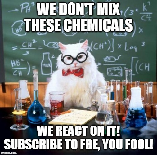 Chemistry Cat Meme | WE DON'T MIX THESE CHEMICALS WE REACT ON IT! SUBSCRIBE TO FBE, YOU FOOL! | image tagged in memes,chemistry cat | made w/ Imgflip meme maker