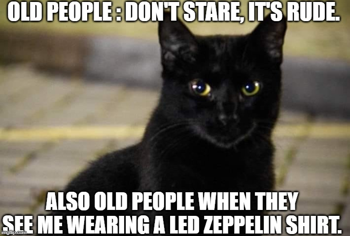 Get The Led Out | OLD PEOPLE : DON'T STARE, IT'S RUDE. ALSO OLD PEOPLE WHEN THEY SEE ME WEARING A LED ZEPPELIN SHIRT. | image tagged in led zeppelin,cats,memes | made w/ Imgflip meme maker