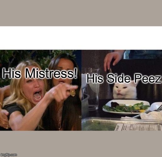 Woman Yelling At Cat Meme | His Mistress! His Side Peez | image tagged in memes,woman yelling at cat | made w/ Imgflip meme maker