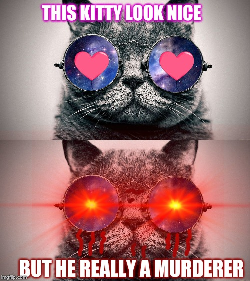 savage kitty | THIS KITTY LOOK NICE BUT HE REALLY A MURDERER | image tagged in cats | made w/ Imgflip meme maker