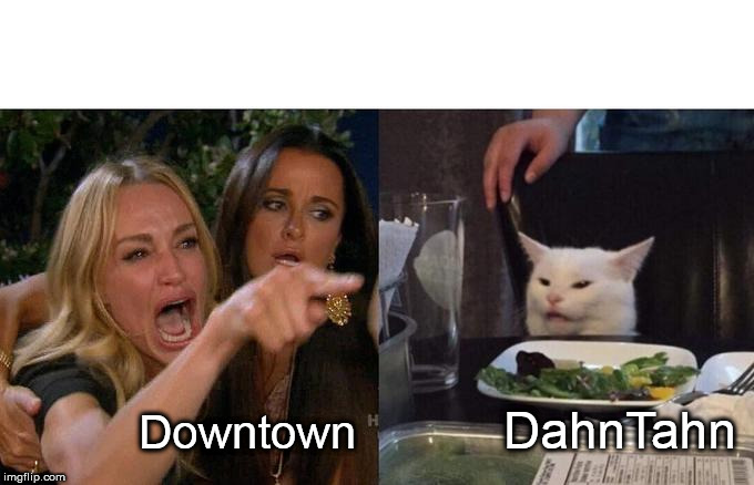 Woman Yelling At Cat Meme | Downtown DahnTahn | image tagged in memes,woman yelling at cat | made w/ Imgflip meme maker