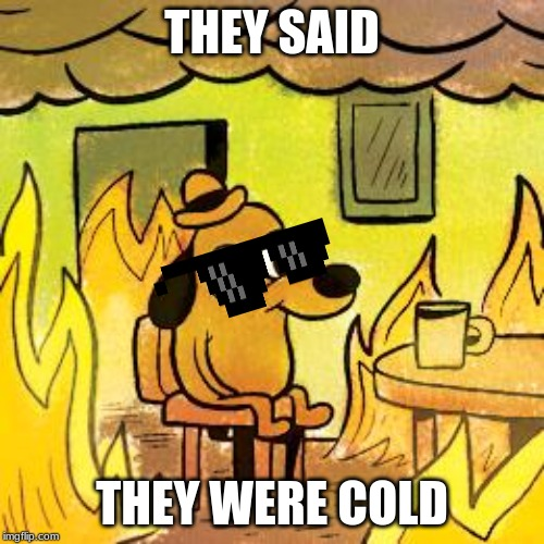 Dog in burning house | THEY SAID THEY WERE COLD | image tagged in dog in burning house | made w/ Imgflip meme maker