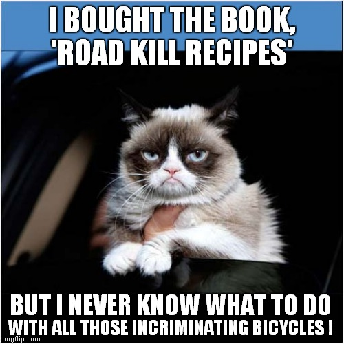 Grumpys Disappearing Cyclicists Trick | I BOUGHT THE BOOK, 'ROAD KILL RECIPES' WITH ALL THOSE INCRIMINATING BICYCLES ! BUT I NEVER KNOW WHAT TO DO | image tagged in fun,cats,grumpy cat,cyclists | made w/ Imgflip meme maker