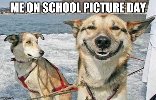 Original Stoner Dog Meme | ME ON SCHOOL PICTURE DAY | image tagged in memes,original stoner dog | made w/ Imgflip meme maker