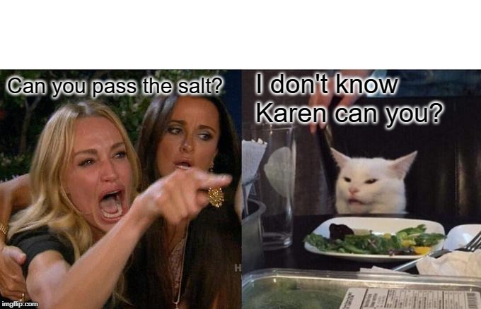 Woman Yelling At Cat Meme | Can you pass the salt? I don't know Karen can you? | image tagged in memes,woman yelling at cat | made w/ Imgflip meme maker