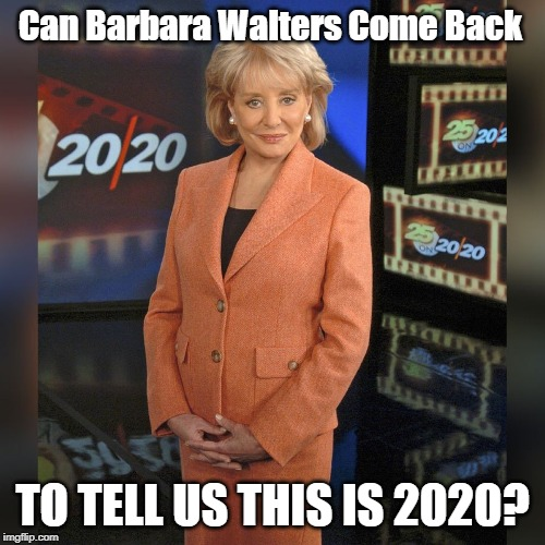 Can Barbara Walters Come Back TO TELL US THIS IS 2020? | image tagged in happy new year,new year,new years eve,2020 | made w/ Imgflip meme maker