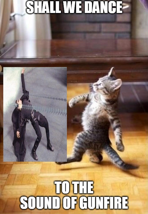 Cool Cat Stroll |  SHALL WE DANCE; TO THE SOUND OF GUNFIRE | image tagged in memes,cool cat stroll | made w/ Imgflip meme maker