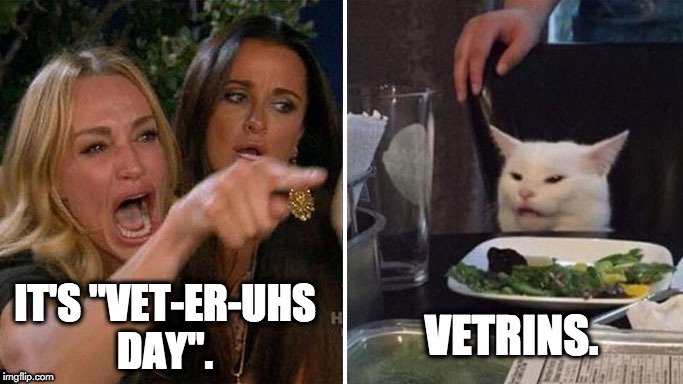 "Angry lady cat | IT'S ""VET-ER-UHS DAY"". VETRINS. 