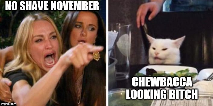 NO SHAVE NOVEMBER CHEWBACCALOOKING B**CH | image tagged in hairy legs | made w/ Imgflip meme maker
