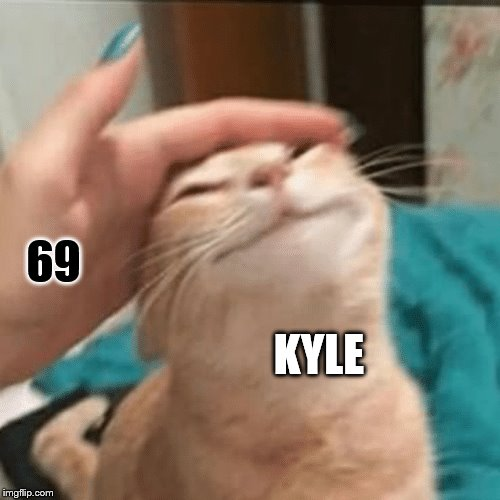 Pet the cat | KYLE 69 | image tagged in pet the cat | made w/ Imgflip meme maker