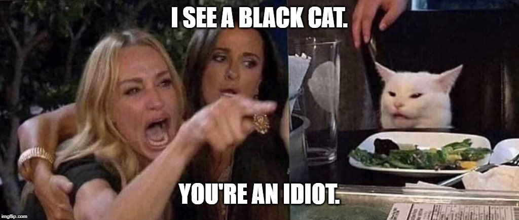 woman yelling at cat | I SEE A BLACK CAT. YOU'RE AN IDIOT. | image tagged in woman yelling at cat | made w/ Imgflip meme maker