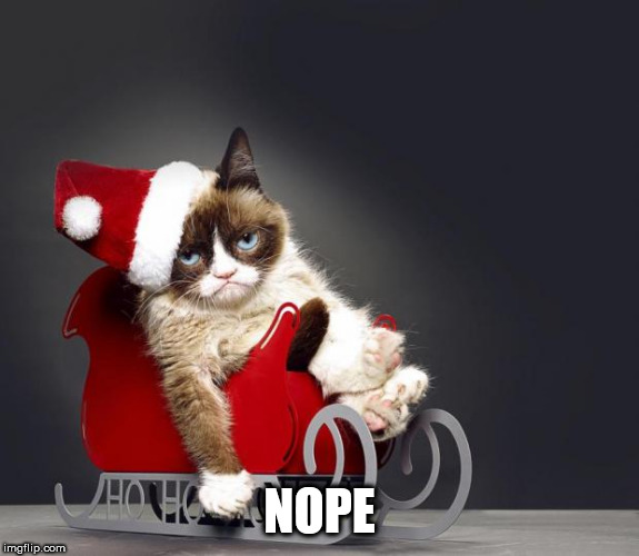 Grumpy Cat Christmas HD | NOPE | image tagged in grumpy cat christmas hd | made w/ Imgflip meme maker