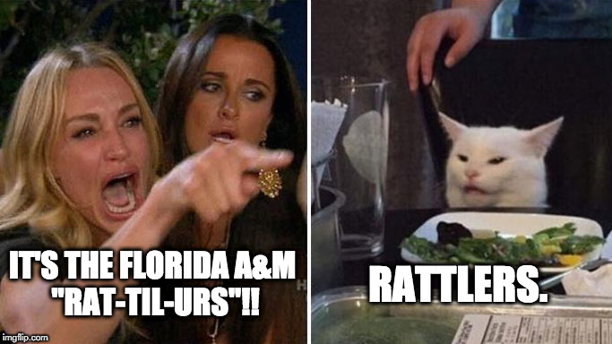 "Angry lady cat | IT'S THE FLORIDA A&M  ""RAT-TIL-URS""!! RATTLERS. 