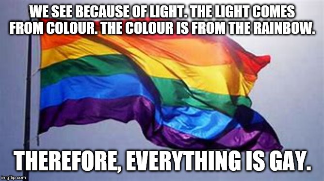 Everything is Gay | WE SEE BECAUSE OF LIGHT. THE LIGHT COMES FROM COLOUR. THE COLOUR IS FROM THE RAINBOW. THEREFORE, EVERYTHING IS GAY. | image tagged in my friend | made w/ Imgflip meme maker
