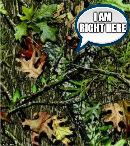 Camo | I AM RIGHT HERE | image tagged in camo | made w/ Imgflip meme maker